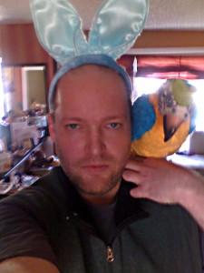 bunny-parrot-tuffguy